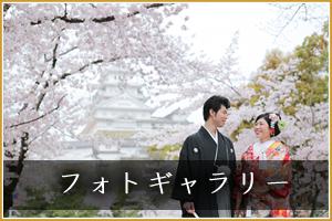 姫路神社のフォトギャラリー
