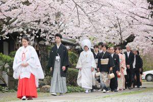 2016年4月5日姫路神社